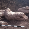 Farmer stumbles upon burial site filled with amazing ancient treasures
